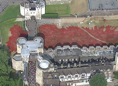 518353931-Raw-Poppies-at-Tower-of-London